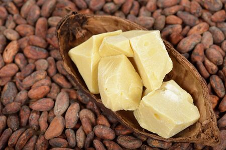 cocoa beans: Natural cocoa butter and cocoa beans Stock Photo
