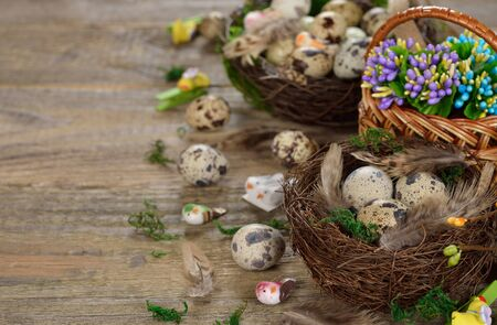 quail nest: Quail eggs in a nest on a wooden background, Easter concept