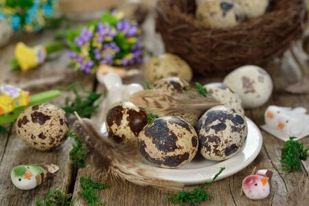 huevos codorniz: Huevos de codorniz sobre un fondo de madera Foto de archivo
