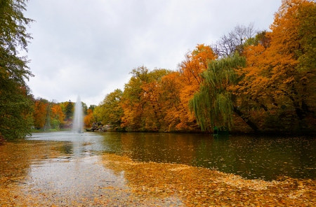 Park Sofiyivka (Sofievka), Uman, Cherkasy region, Ukraine. Golden autumn, the trees are covered with yellow, red, green leaves. Fountain of the snake. Water reflection in pond.
