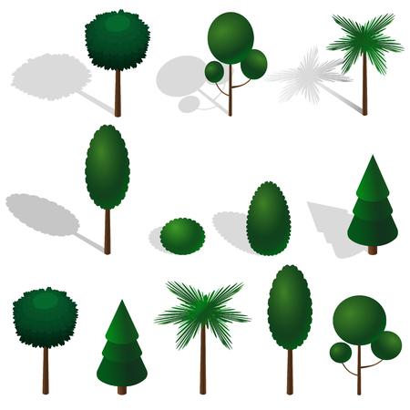 Isometric vector tree set. Isometric vector trees elements for design. 矢量图像