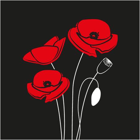 Red Poppy flower isolated on black background. 矢量图像