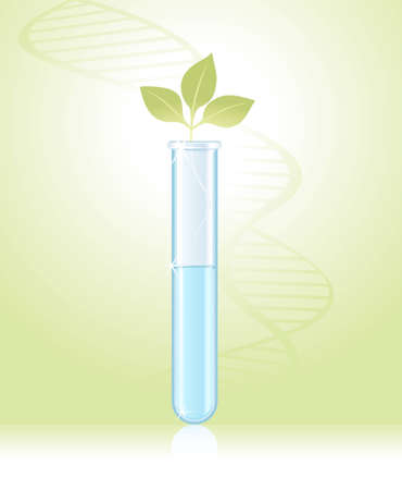 test tube: green sprout in a test tube on a green background Illustration