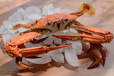 blue swimmer crab: blue swimmer crab on wooden background with ice and fresh lime