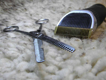 close up of haircutter and scissors photo