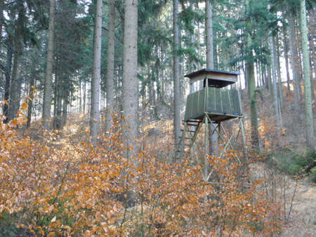 hunting Tower in the forest in the spring  photo
