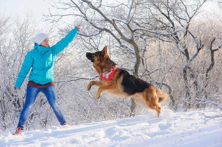 herrin: Mädchen erzieht ihren Schäferhund. Deutsch Shepherd mit Spielzeug und seine Geliebte im Winter sonnigen Tag. Mädchen geht ihr Schäferhund oder Hund auf den Hintergrund einer verschneiten Wälder oder Sträucher mit Raureif und Frost bedeckt. Lizenzfreie Bilder