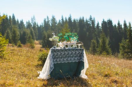 space for writing: Candybar cupcakes and cakes with tags empty space for writing. Candybar in the mountains. forest in the background. autumn. mountainside with yellowed grass. Sunny day. Wedding decorations. Sweets on a table in the open air, outdoors, nobody. Stock Photo