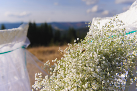 aisles: Happy outdoor wedding ceremony scene for autumn mountain wedding. chair decorated of flowers, gypsophila, mountains in the background. Sprig of gypsophila with a bee.