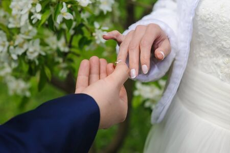 day flowering: Groom and bride holds wedding ring. Wedding concept. Groom gives an engagement ring to his bride.  Wedding day. Focus on hand and ring. Blossoming, flowering branch on background. outdoors. Stock Photo