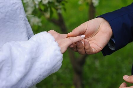 day flowering: Bride and groom holding hands. Wedding concept. Wedding day. Focus on hand and ring. Blossoming, flowering branch on background. outdoors. Stock Photo