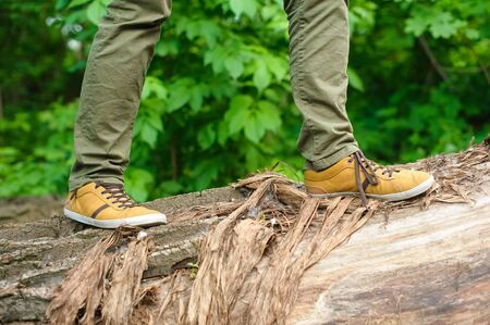 widely: Man in the yellow shoes walking on a log. Fallen tree in the forest. The man widely striding. Stock Photo