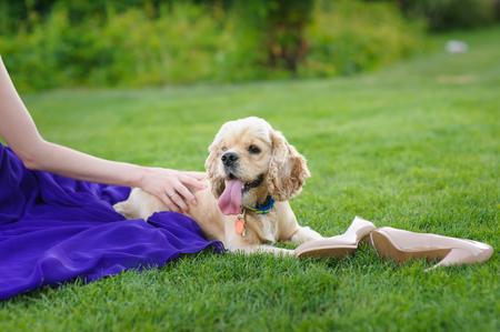 stroking: Blonde gorgeous woman in long purple luxurious dress posing in garden. Blonde stroking a dog. Stock Photo