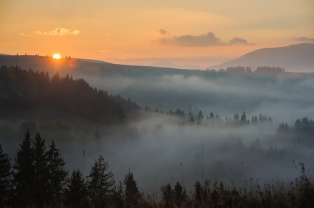 Morning in the mountains. Carpathian mountains at dawn. 스톡 콘텐츠