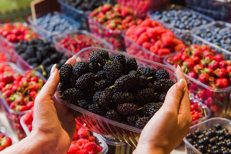 seller: Buying berries in the local market. Close-up, hand touches mulberry. Various berries in the background. Stock Photo
