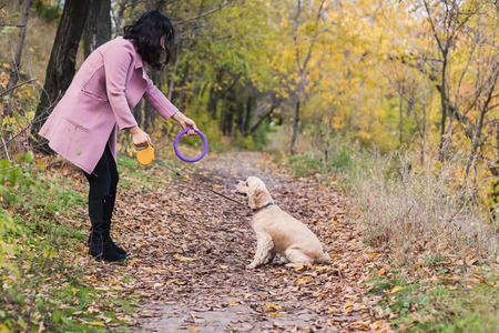 Asian girl playing with her dog in the park. Stock Photo