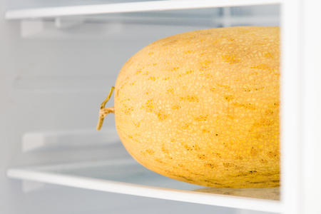 Part of uncut melon with tail in fridge