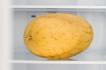 Whole oval melon at fridge close up