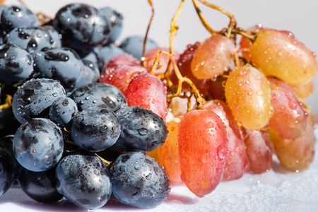Two kinds of grape in studio close up 스톡 콘텐츠