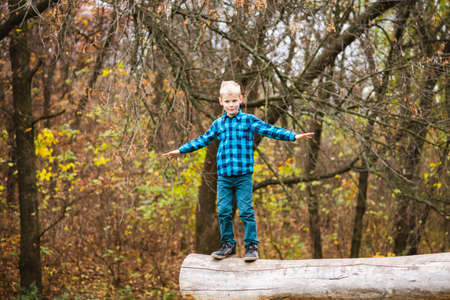 Blonde active boy in blue shirt stand on old wood and spread arms, happy childhood outdoors at autumn forest background