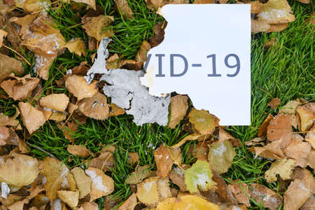 Burned white paper sheet with printed words Covid-19 lay at autumn background with green grass and dry foliage 스톡 콘텐츠