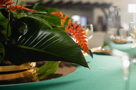 Close up heliconia bihai exotic plant decoration