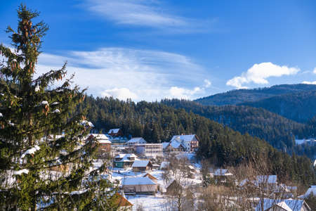 Beautiful Carpathian ukrainian village between trees in coniferous forest with mountains and blue sky view 스톡 콘텐츠