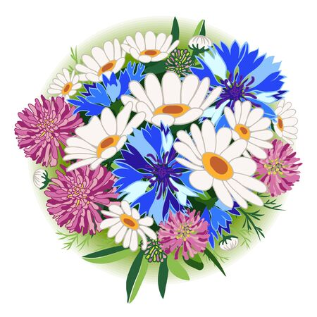 Clover. Chamomile. Daisy. Cornflower. Bouquet of wild flowers. Vector illustration. Flowers isolated on white background.