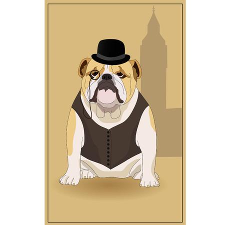 English bulldog and  symbol of England. illustration.