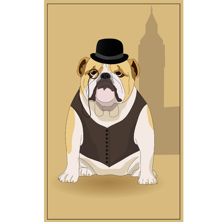 bowler hat: English bulldog and  symbol of England. illustration.