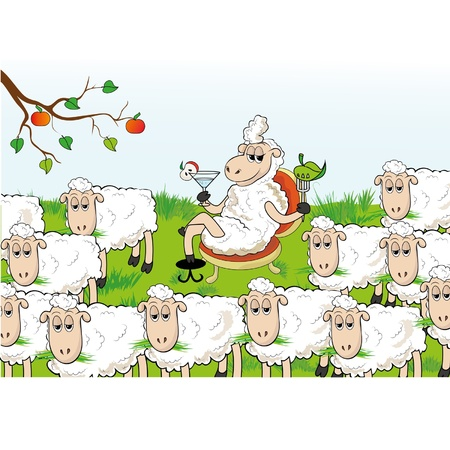 enterprising: Enterprising sheep separated from the herd. Abnormal behavior.