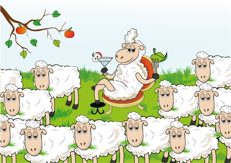 flock of sheep: Enterprising sheep separated from the herd. Abnormal behavior.