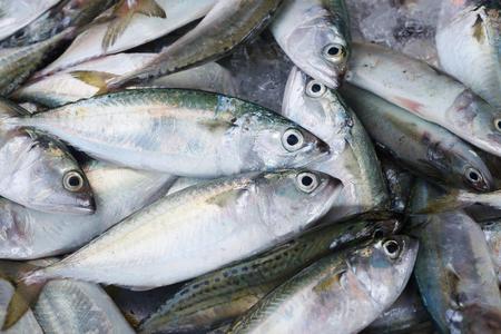fresh taste: fresh fish on the Asian fish market