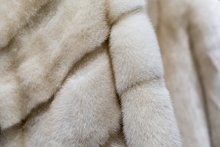 Mink coats hanging at the new fashion store
