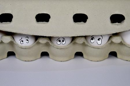Die Eier werden am Quarantänedurchgang an der Grenze untersucht Standard-Bild - 92948014
