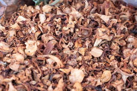 Dried chanterelles mushrooms closeup photo Standard-Bild - 108230313