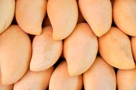 fresh mango fruits on market