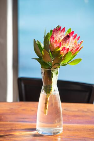 Protea sunny flower and original teapot on the table in the room. Vertical photo