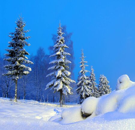The yeti. Russian winter in Christmas holidays. photo