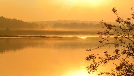Gold morning on the river. The river Oka. Russia. The Moscow area. photo