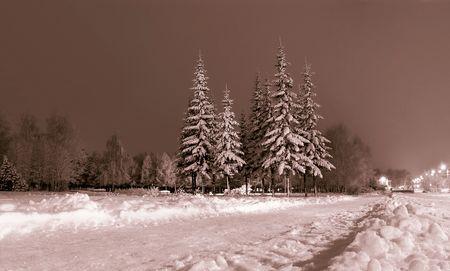 Winter, night landscape. Russian winter on christmas holidays. Stock Photo - 629670