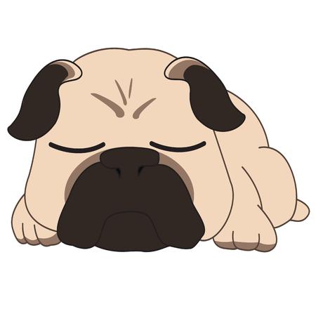 Pug is sleeping, or he angry? Archivio Fotografico - 96617270