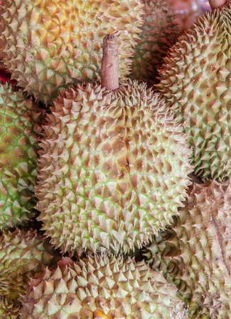 Durian on sale in market , king of fruit Thailand photo