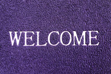 doormat: welcome doormat purple color
