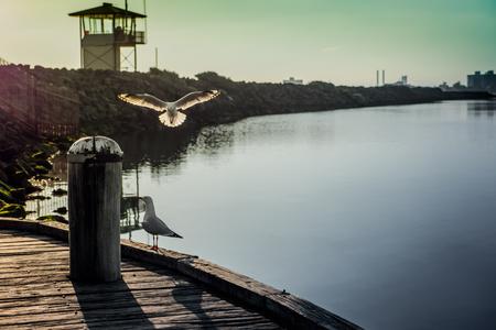 st kilda: Sea view Sunset time at St Kilda Beach, Melbourne Australia