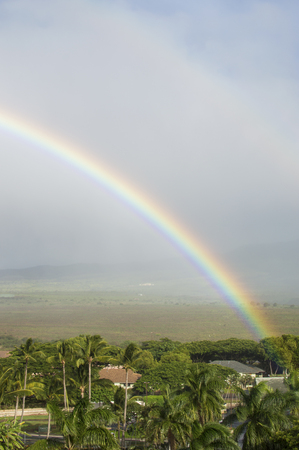 miracle tree: Double rainbow over the land. Stock Photo