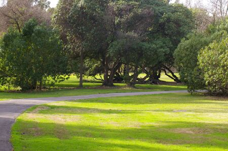 grasachtig park pad