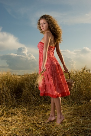 Beautiful slavonic girl pose in wheat field with basket photo