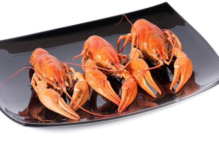 Plate of red boiled lobsters. Luxury diet meal photo