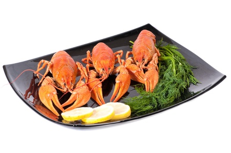 Plate of red boiled lobsters with dill. Luxury diet meal photo
